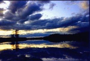 bild lånad från Ulla
