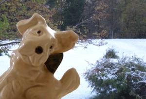 Stubben i årets första snö