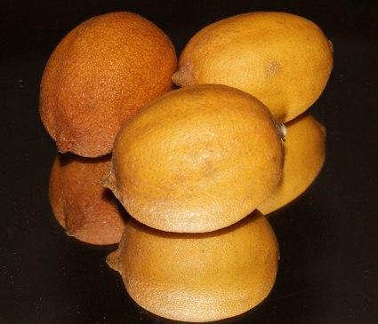 36 citrus